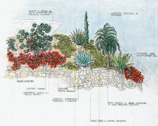 Flores Exóticas : 0044
