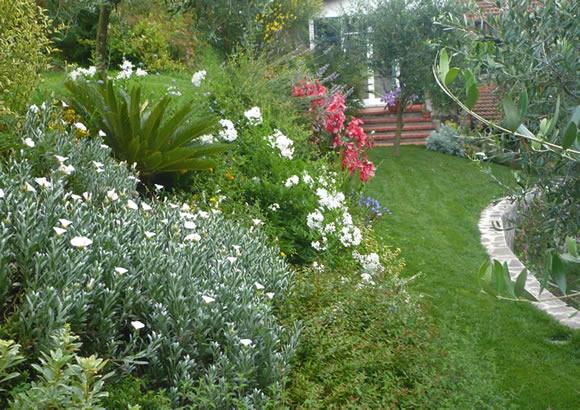 Progetto giardino mediterraneo a sorbolo progettare giardini for Progetto aiuole per giardino